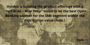 Hylobiz - and SME Neobank