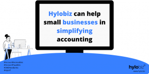 Hylobiz can help Accountants in bookkeeping