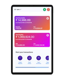 Hylobiz Dashboard to keep track of all payouts and pay-in – Access your Financial Health